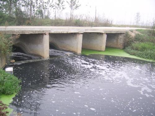 环境生态社区 03 专业区 03 水处理专区                 被污染