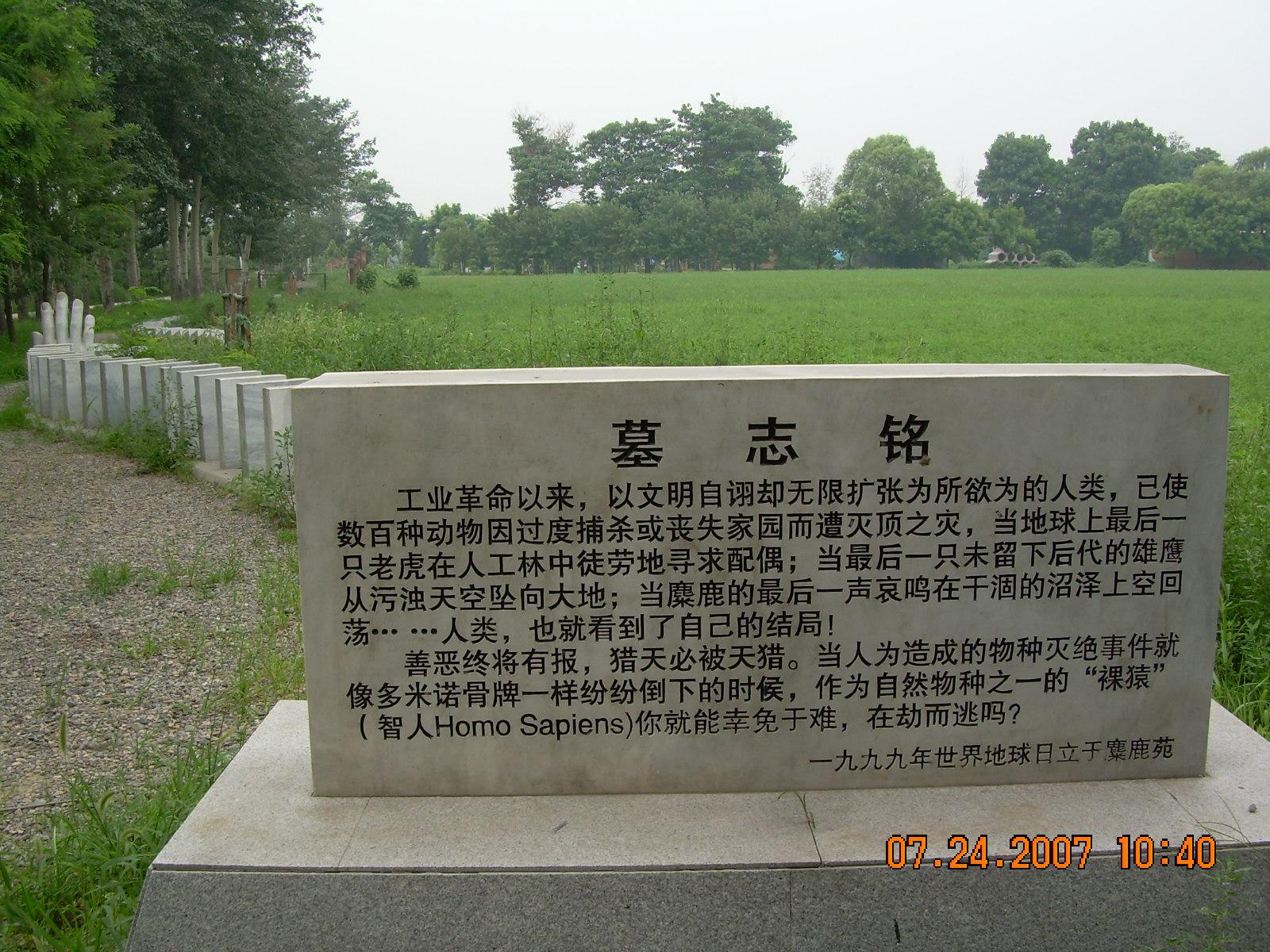 世界灭绝动物墓碑