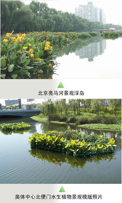 re:4,人工浮岛 - 环境生态社区