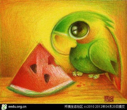 动物们的眼睛(彩铅画)