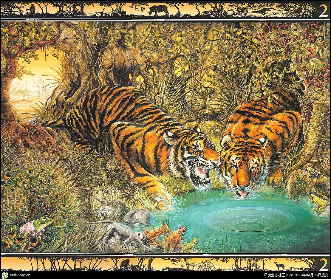 graeme base动物绘画
